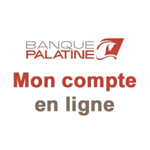 Comptes Palatine particuliers