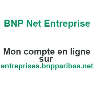 bnp net entreprises comptes. Black Bedroom Furniture Sets. Home Design Ideas