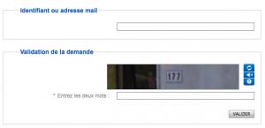 Entrez votre adresse mail ou votre identifiant et recopier le captcha